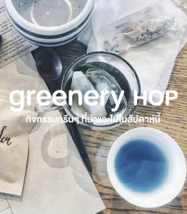 Greenery Hop: ใกล้หมดเดือนมีนาฯ ถ้ายังไม่มีใคร ไปหาอะไรกรีนๆ ทำช่วง 17 – 23 มีนาคมนี้กัน