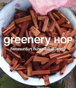 Greenery Hop: สาดน้ำสงกรานต์ให้เย็นกาย แล้วมาเย็นใจกันต่อกับกิจกรรมกรีนช่วง 13 – 19 เมษายน