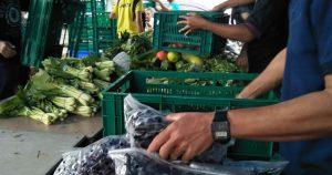 ชวนมาเปลี่ยนอาหารเหลือทิ้งให้มีค่ามากกว่าแค่ปุ๋ย! กับ Thaiharvest-SOS