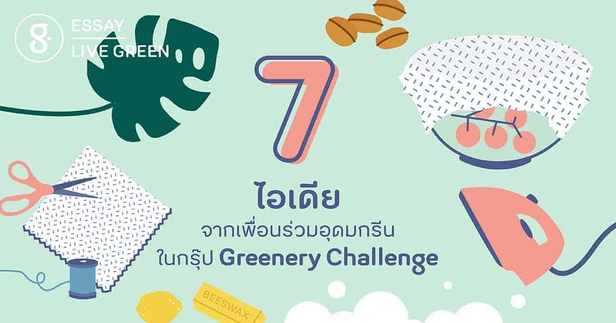 7 ไอเดียจากเพื่อนร่วมอุดมกรีน ในกรุ๊ป Greenery Challenge