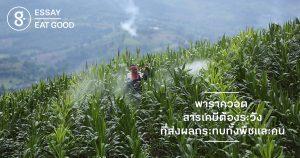 'พาราควอต' สารเคมีต้องระวัง ที่ส่งผลกระทบทั้งพืชและคน