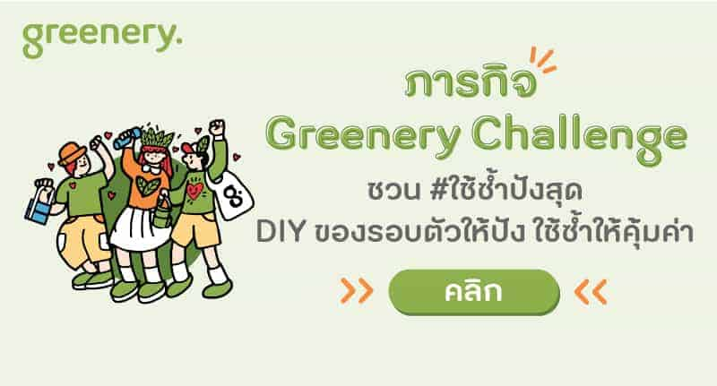 Greenery x TikTok